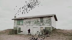(emmakatka) Tags: abandoned house derelict decay surreal world dreamy dream woman explore adventure country northdakota emmakatka purple sky cowboy hat