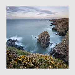 Mettle (Stuart Leche) Tags: cliffs coast erosion geology gorse grass island landscape leisure longexposure naturalarch outdoor pembrokeshire rocks scenery scenic sea seascape serene spring stack stuartleche wwwstuartlechephotography
