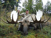 Alaska Dall Sheep Hunt & Moose Hunt 17