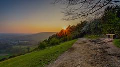 The end of a beautiful day... (TanzPanorama) Tags: hillside surreyhills surrey england bench viewpoint view travel tanzpanorama fe1635mmf4zaoss sel1635z sonya7ii ilce7m2 a7ii variotessartfe1635mmf4zaoss flickr nature sunlight sunstar dusk landscape park dayend dorking boxhill