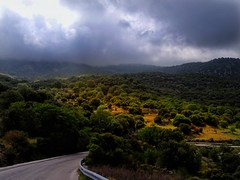 On the mountain..mt Lepetymnos..Lesvos Greece (panoskaralis) Tags: green nature tree trees oak oaks outdoor landscape mountain mountainside mountains road island lesbian lesbos lesvosisland lesvos molyvosbeach molyvos aegean aegeansea greece greek hellas hellenic mytilene