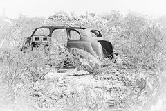 Ghost Car (Mike Schaffner) Tags: abandoned auto bw blackwhite blackandwhite car decay decayed derelict desert deserted dilapidated ghost ghosttown hikey highkey monochrome old ruins rusted rusty terlingua texas unitedstates us