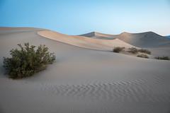 Blue Dunes (sierra_bum) Tags: sand dunes flickr canon landscapes colors desert