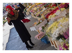 At the Rotterdam flower market (AurelioZen) Tags: europe netherlands rotterdam market woman redscarf flowers blaak fashion