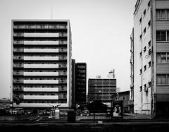 (t*tomorrow) Tags: panasonic lumix gx8 12100mm architecture monochrome 建築 白黒