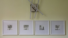 Finaly hanging (cardijo) Tags: print framed wall analog film ilford multigrade rcdeluxe