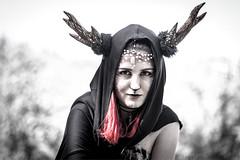 ELFIA-1 (henny vogelaar) Tags: netherlands haarzuilens kasteeldehaar elfia fantasy fantasyfair 2017 elfia2017