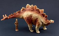 Stegosaurus (RobinGoodfellow_(m)) Tags: schleich replicasaurus stegosaurus