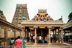 Kapaleeswarar Temple (7) (Pugalenthi Iniabarathi) Tags: city temple evening madras citylife devotion devotional chennai mylapore kapaleeswarartemple d3200 nammachennai pugalenthi mycitychennai mychennai ithunammachennai