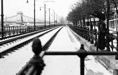 A winter vision (Alessandro Crea) Tags: winter blackandwhite bw white black monochrome blackwhite nikon hungary princess little budapest ungheria d90