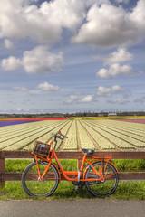 "Orange Bike • <a style=""font-size:0.8em;"" href=""http://www.flickr.com/photos/45090765@N05/8880472069/"" target=""_blank"">View on Flickr</a>"