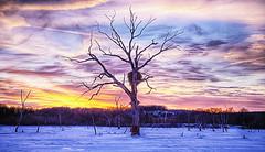 A beautiful world (Kansas Poetry (Patrick)) Tags: kansas eaglenest clintonlake patrickemerson patricknancyforever