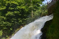 Plus de 20m3 d'eau à la seconde pour la grande chute