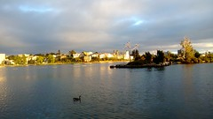 Dusk at Lake Merritt (James Matuszak) Tags: sunset lake pelicans skyline island oakland bright dusk goose lakemerritt 2013
