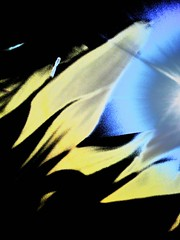 Starseeker (catcarterphoto1) Tags: abstract star sunflower dreamscape christytalbott photocat19 christycarter catcarterphoto