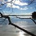 LakeAuburn Ice JMM