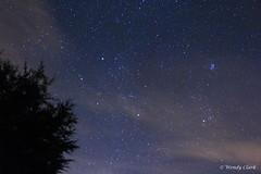 Pleiades & Eastern Sky 15 09 13, 3.57am (twinklespinalot) Tags: canon m45 astronomy nightsky taurus pleiades capella m35 aldebaran astrophotos 700d Astrometrydotnet:status=solved Astrometrydotnet:id=supernova8189