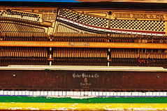 forbrother (local paparazzi (isthmusportrait.com)) Tags: old family blue musician music white newyork black green art texture lines yellow metal vintage keys screw outdoors prime pod keyboard key colorful downtown raw notes iso400 painted piano shapes ivory pins retro musical rusted repetition fancy instrument chip aged practice manual madisonwi tune tuner peel peelingpaint expensive sheetmusic loud statestreet crusty exposed afs chords lessons alloy skill ritzy autofocus grandpiano crusted reallyold isthmus catchycolorsgold outoftune 2013 playthepiano nikond90 danecountywisconsin photoshopelements7 pse7 50mm14g lopaps behrbrosco