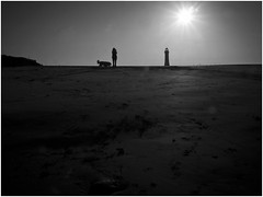 Mono - they might be giants (dadslucky15) Tags: lighthouse giant newbrighton