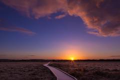 clara bog morning-1-2 (EoghanL) Tags: morning light sky moon snow sunrise landscape boardwalk bog clarabog