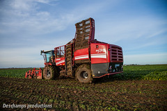 Sugar beet harvest in France (Deschamps productions) Tags: new tractor france holland harvest sugar trailer beet harvester tracteur benne beauce 620 rexor grimme selfpropelled maupu