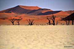 La Piana di Deadvley (Liv ) Tags: africa park nikon desert southern national namibia sossusvlei namib deadvlei 2013 laivphoto qualitygroup ildiamante nauklutf