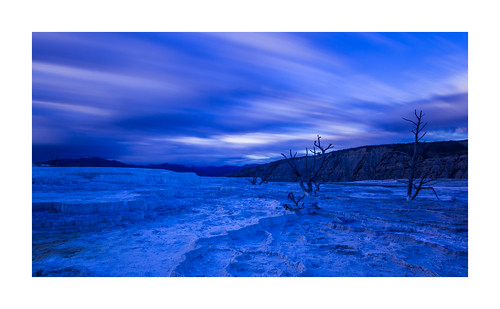 Blue Christmas from Yellowstone ;)
