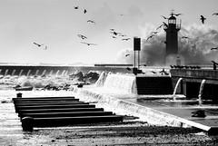 002.2014 (Francisco (PortoPortugal)) Tags: portugal porto farol felgueiras franciscooliveira portografiaassociaofotogrficadoporto fol0689