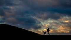 Look into the wide (Georgie Pauwels) Tags: life street city sky dog sun color geometric public lines clouds canon germany dark alone shadows cloudy geometry walk candid gelsenkirchen georgiepauwels
