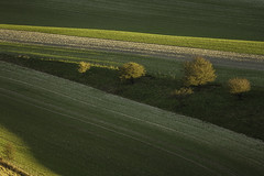 shadows (Stephen Kiley) Tags: light sussex southdowns coldcoombes