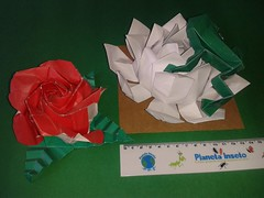 Frog Toshikazu Kawasaki, Lotus and Rose Kawasaki variation. (ecogami br) Tags: origami arte toshikazukawasaki ecogami giulianobio arteedobraduras biologiamaisdobras artesanatoedobras ecodobras frogkawasaki oripp5
