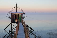 Une pêcherie sur la Loire (Philippe POUVREAU) Tags: canon river ngc paysage raffinerie loire brume estuaire donges loireatlantique 2013 550d pêcherie corsept paysderetz