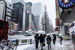 2014.02.08  (dc_taku) Tags: snow japan tokyo   akihabara akiba   canoneos5dmarkiii canonef2470f4lisusm