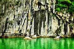 Surface textures: Halong Bay, Vietnam (hethelred) Tags: world leica cliff green heritage water rock landscape bay site 28mm surface vietnam formation textures limestone vegetation 28 lush karst emerald halong m9 elmarit