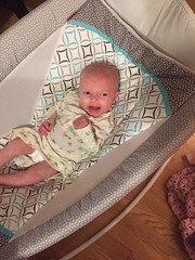 "Dani in Her Bassinet • <a style=""font-size:0.8em;"" href=""http://www.flickr.com/photos/109120354@N07/32268507174/"" target=""_blank"">View on Flickr</a>"