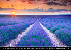 France - Provence - Valensole - Lavender Field at Sunset (© Lucie Debelkova / www.luciedebelkova.com) Tags: valensole provence france francie french française frenchrepublic républiquefrançaise westerneurope europe eu fr landscape mountain hill rock valley world exploration trip vacation holiday place destination location journey tour touring tourism tourist travel traveling visit visiting sight sightseeing wonderful fantastic awesome stunning beautiful breathtaking incredible lovely nice best perfect wwwluciedebelkovacom luciedebelkova luciedebelkovaphotography sky clouds