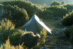 20170302-07-Campsite (Roger T Wong) Tags: australia greatpinetier np nationalpark sel70300g sony70300 sonya7ii sonyalpha7ii sonyfe70300mmf2556goss sonyilce7m2 tasmania wha wallsofjerusalem worldheritagearea bushwalk camp hike tent trektramp walk