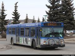 Edmonton Transit System #4174 (vb5215's Transportation Gallery) Tags: ets edmonton transit system 1999 new flyer d40lf