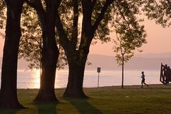 early jogging (phacelias) Tags: trees bomen alberi jogging corsa alba sunrise zonsopkomst freshair ariafresca frisselucht