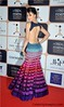 Urvashi-Rautela-In-Backless-Dress (Celebritylovepics) Tags: hot sexy glamours funny naughty elegant hotness cuteness adorable romantic cutiepie veryhot verysexy bikini seductive fabulous romance passionate