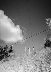 Easter (Joan Mostad) Tags: abstract powerlines
