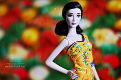 Bing Bing (Lindi Dragon) Tags: doll barbie fan bingbing mattel china