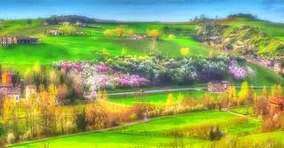 * Castelvetro /  Mistero di un sogno a primavera  *  Mystery of spring's dream  *  (Explored)  .