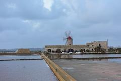Saline di Trapani e Paceco, Sicily, April 17, 2017 431 (tango-) Tags: sicilia sizilien sicilie sicily italia italien italy saline trapani paceco windmills muliniavento