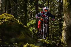 Ride de printemps (Manonlemagnion) Tags: vtt sport dh nature sousbois mousse roche bokeh verdure lapierre nikond7000 70200mm sb700
