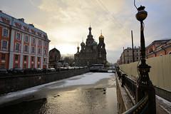 RUSSIA 2016 (Andrea Votta) Tags: russia moskow mosca san saint petersburg pietroburgo travel viaggio