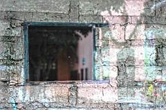 Sombras y reflejos dibujando (Gaby Fil Φ) Tags: santarosadelima lima perú sudamérica abstracciones abstracto sombras reflejos centrohistóricodelima casadesantarosadelima hermitadesantarosadelima santuariosantarosadelimaperú ventanas