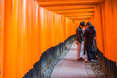 Fushimi Inari-taisha (julesnene) Tags: canon7dmark2 canon7dmarkii canonef35mmf14lusmlens fushimiinaritaisha inarishrine japan juliasumangil kyoto destination fox julesnene orange religion shrine torii touristattraction travel kyōtoshi kyōtofu jp