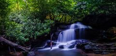 The Babbling Brook (Ron Harbin Photography) Tags: northcarolina waterfall brook water stream wild green flowers scenic usa