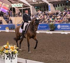 17429_Sydney_CDI_GPFS_0121.jpg (FranzVenhaus) Tags: athletes dressage australia equestrian riders horses ponies rug siec nsw sydney newsouthwales aus